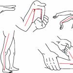 シニアと柔軟性について その2